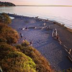 pnw naturelove summer seattleIGers pugetsound nothingisordinary driftwood carkeekpark visitseattle afternoonhellip