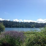 lakewashington seattle watertherapy