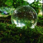 jjforum1624 moss naturelove earthlove presence garden seattleigers